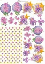 Knipvel A4 Mireille E570 Roze-paars bloemen