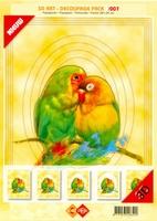 3D Art decoupage Card Deco 3-007 Papagaaien