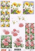 3D Knipvel Pick UP Pu033 Bloemen en rechte randen
