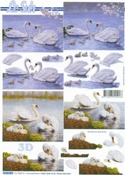 A4 Knipvel Le Suh 4169907 Vogels/zwanen