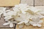 Prima flowers E line flowers Celebrations 300326 white