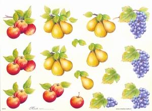 Knipvel A4 Mireille E618 Fruit