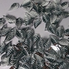 Blaadjespailletten PL001 zilver