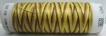 Mettler borduurgaren Silk-Finish Multi 9828