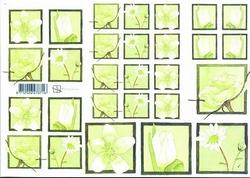 A4 Knipvel Marjoleine 712926278716 Witte bloemen