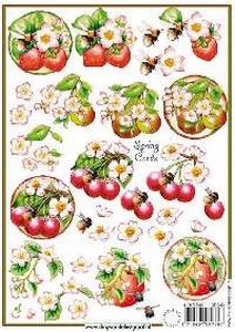 A5 knipvel Spring Cards 3D 546 Fruit