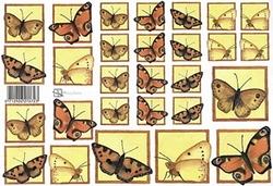 A4 Knipvel Marjoleine 712926278723 Vlinders rood bruin