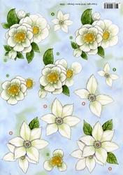 3D Knipvel Anne Design VBK 2506 Witte bloemen