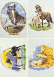 Hobbypost A5 Knipvel Paarden