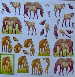 3D Knipvel Crea Motion Horses