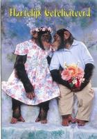 Wenskaart 37 Hartelijk Gefeliciteerd Chimpansees