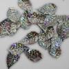 Blaadjes pailletten PLB008 zilver-holografisch