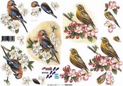 A4 Knipvel Le Suh 8215103 Vogels op tak