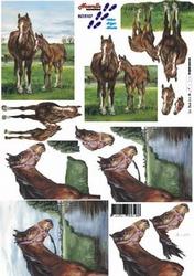 A4 Knipvel Le Suh 8215107 Paard