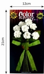 Petaloo Color Me Crazy bouquets wild flowers 002