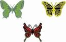 Cheery Lynn DL113 Exotic butterflies small #2 /vlinder