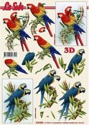 A4 Knipvel Le Suh 4169802 Vogels papegaai/ara