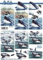 A4 Knipvel Le Suh 8215539 Potvis/orka