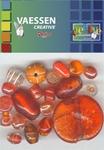Kralen Crackle beads ass. oranje 23650-008