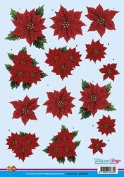 A4 Kerstknipvel Matori CD10241 Kerst bloemen