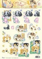 A4 Knipvel Studio Light Cats & dogs 08