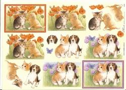 Knipvel A4 Mireille E504 Jonge hondjes