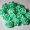 Bloemknopjes roosje 20 groen