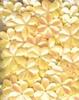Bloemen pailletten PK002 geel