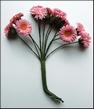 MD Flowers JU0886 Pink bouquet