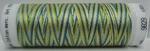Mettler borduurgaren Silk-Finish Multi 9829