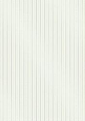 cArt-UsKarton foil CC Dotty lines mint/zilver