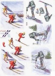 A4 Knipvel Le Suh  821509 Skiërs