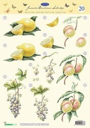 A4 Knipvel Studio Light JBS 20 Janneke Brinkman Fruit