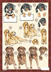 3D Stansvel Line 617 Honden
