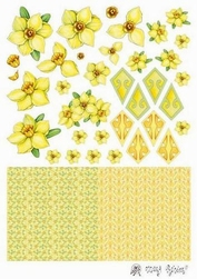 A4 Knipvel Marij Radher Crea folding Narcis
