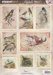 A4 Stansvel Studio light  RPSL47 Romantic Pictures Vogels