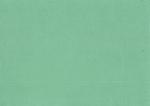 Cardstock Colour Structure Paper 152 shamrock