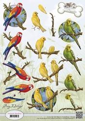 3D Knipvel Amy Design CD10539 Animal Medley Tropical Parrots