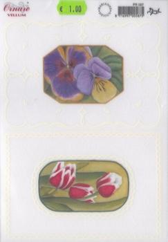 Ornare Vellum PR 067 Bloemen