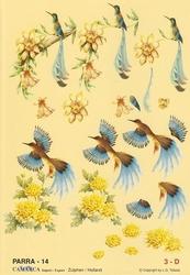 A4 Knipvel Parra 14 Blauwe vogels