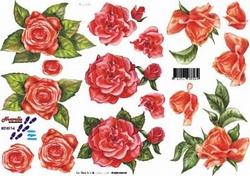 A4 Knipvel Le Suh 8215114 Rode rozen
