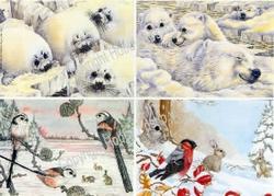 Hobbypost A5 Knipvel Vogels in de winter/ijsbeer & zeehondje