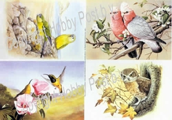 Hobbypost A5 Knipvel Vogeltjes
