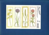 Deco Draw Borduurkaart DD011 Wilde bloemen