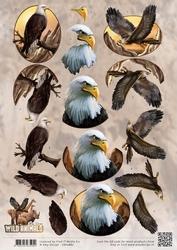 3D Knipvel Amy Design CD10867 Wild Animals Eagles/arenden