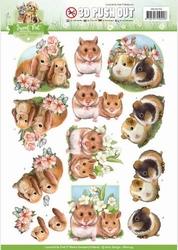 3D Stansvel Amy Design SB10194 Sweet Pet Rodents/knaagdieren
