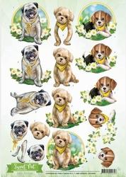 3D Knipvel Amy Design CD10960 Sweet Pet Dogs/honden