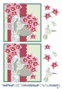 A4 Knipvel Barto Design 67622 Kolibri