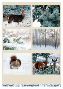 A4 Knipvel Barto Design 67667 Winter
