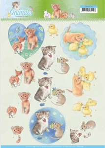 A4 Knipvel Jeanine CD11274 Young Animals Kittens